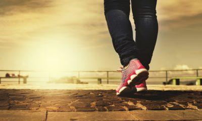 Stworzony, by chodzić